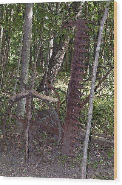 Grave Site Wood Print