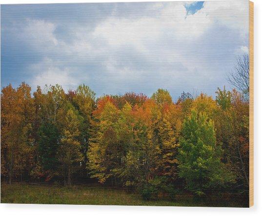 Gray Autumn  Wood Print by Claus Siebenhaar