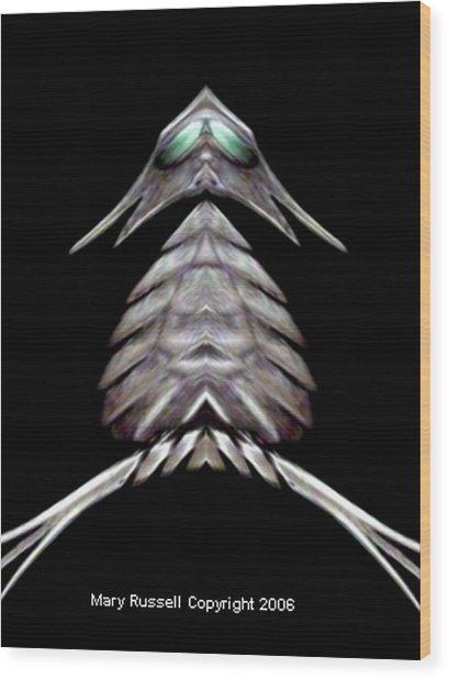 Gray Owl Wood Print