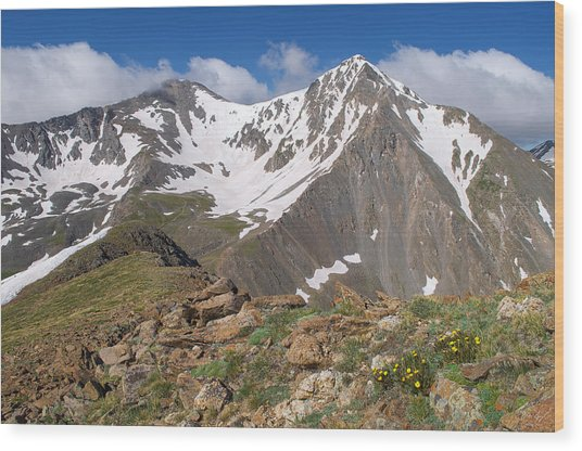 Grays And Torreys Peak Wood Print