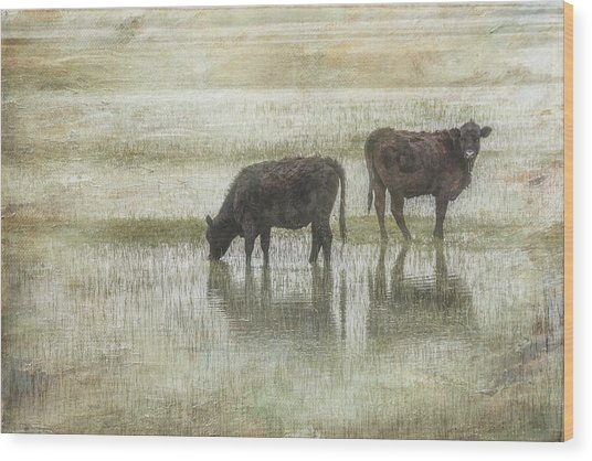 Grazin In The Pond Wood Print