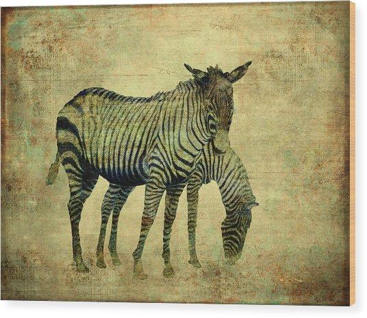 Grazing Zebras Wood Print
