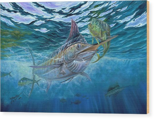 Great Blue And Mahi Mahi Underwater Wood Print