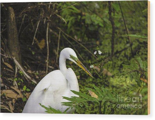 Great Blue Heron - White Wood Print