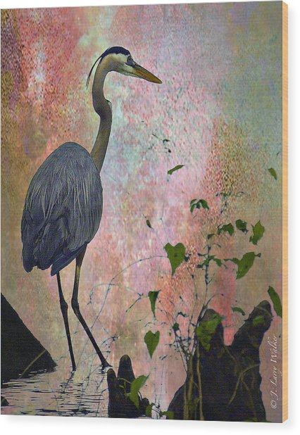 Great Blue Heron Among Cypress Knees Wood Print