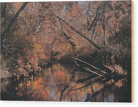 Great Egg Harbor River Wood Print