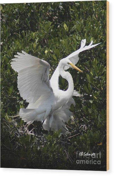 Great Egret 03 Wood Print