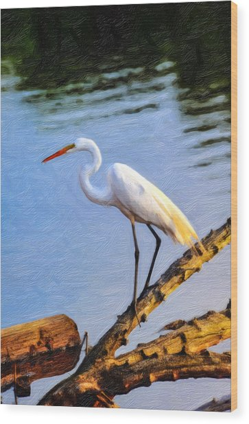 Great Egret Fishing Oil Painting Wood Print