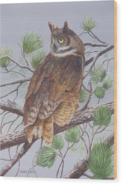 Great Horned Owl Wood Print by James Lawler