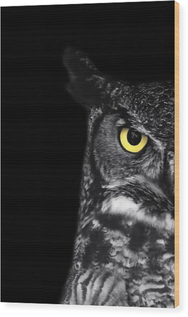 Great Horned Owl Photo Wood Print