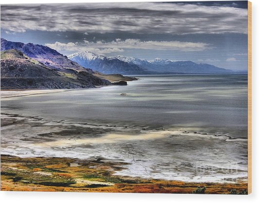Great Salt Lake From Antelope Island Wood Print