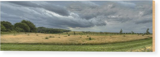 Green And Yellow Meadows At A Golfing Club In Kashubia Of Poland Wood Print