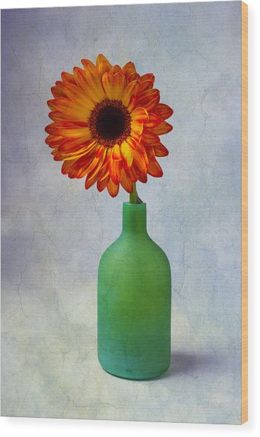 Green Bottle With Orange Daisy Wood Print