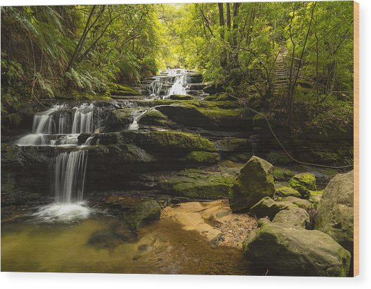 Green Cascades Wood Print