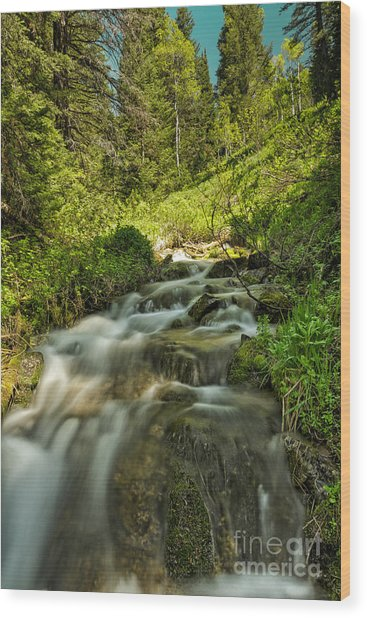Green Colors And A Stream Wood Print by Mitch Johanson