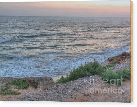 Green Dog Beach Coastline Wood Print by Deborah Smolinske