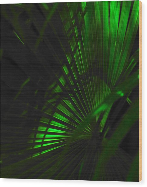 Green Fan Wood Print