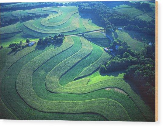 Green Farm Contours Aerial Wood Print by Blair Seitz