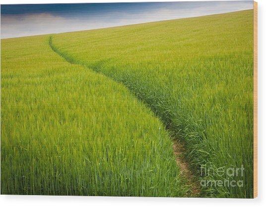 Green Field Wood Print by Michael Hudson