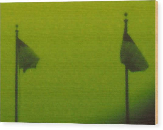 Green Flags Wood Print by Lawrence Horn