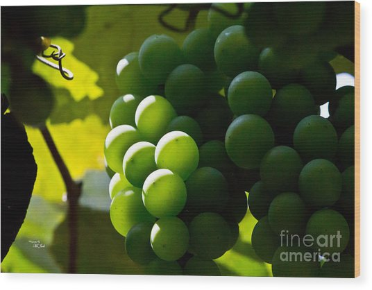 Green Grapes Wood Print