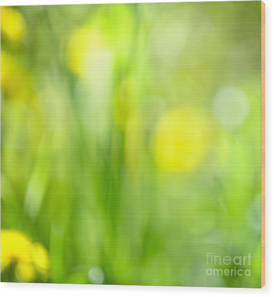 Green Grass With Yellow Flowers Abstract Wood Print