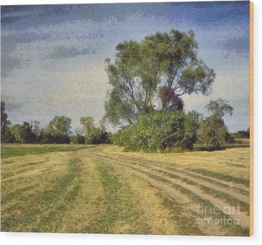 Green Landscape  Wood Print