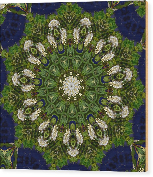 Green Leaf White Flower Mandala Wood Print
