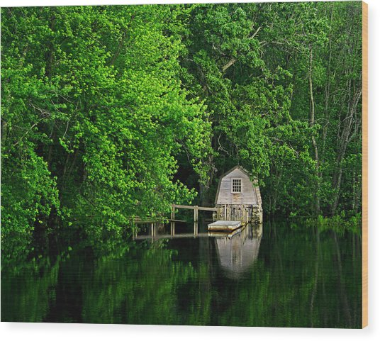 Green Reflections Wood Print by Kerri Ann Crau