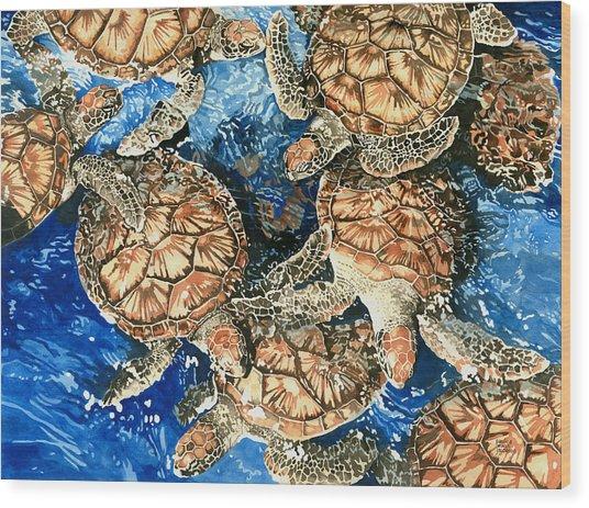 Green Sea Turtles Wood Print