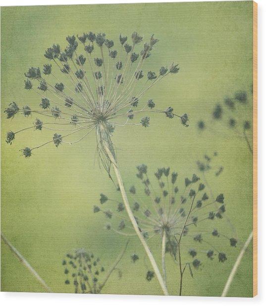 Green Seeds Wood Print by Rani Meenagh