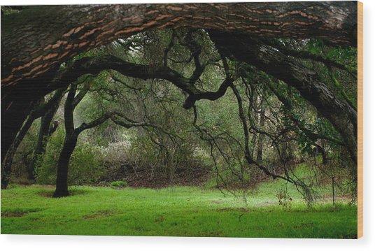 Green Serenity Wood Print