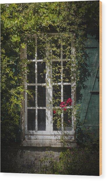 Green Shutter Wood Print