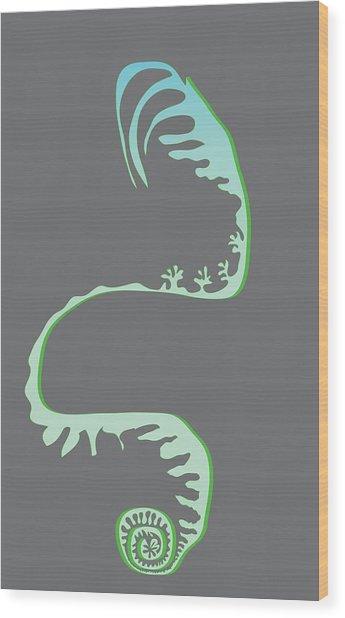 Green Spiral Evolution Wood Print