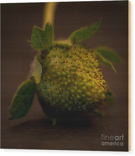Green Strawberry Square Wood Print by Patricia Bainter
