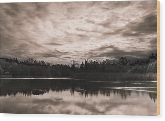 Green Timbers Park At Sunset - Sepia Wood Print