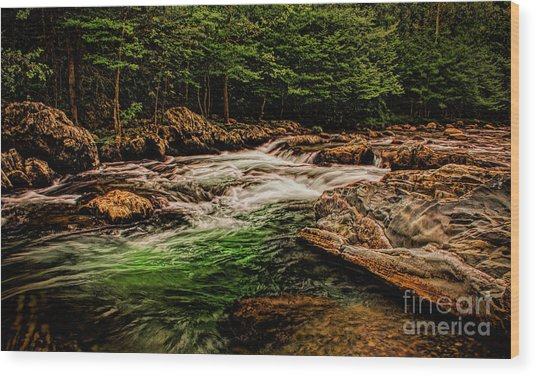 Green Water  Wood Print