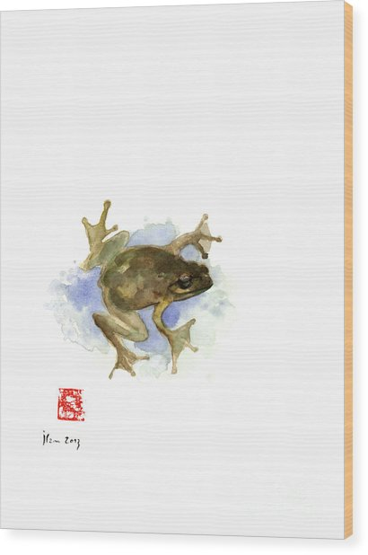 Green Yellow Blue Frog Lake River Animal World Water Colors Jewel Collection Wood Print