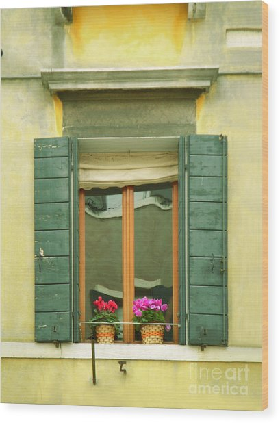 Green Yellow Venice Series Shutters Wood Print