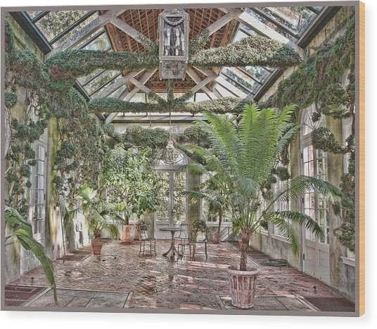 Greenhouse Splendor Wood Print by Elin Mastrangelo
