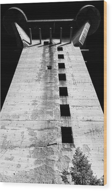 Wood Print featuring the photograph Grim Reminder by Menega Sabidussi