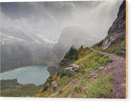 Grinnell Glacier Trail Wood Print