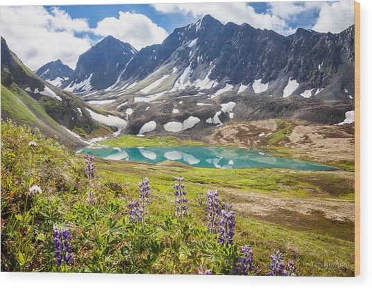 Grizzly Bear Lake Wood Print
