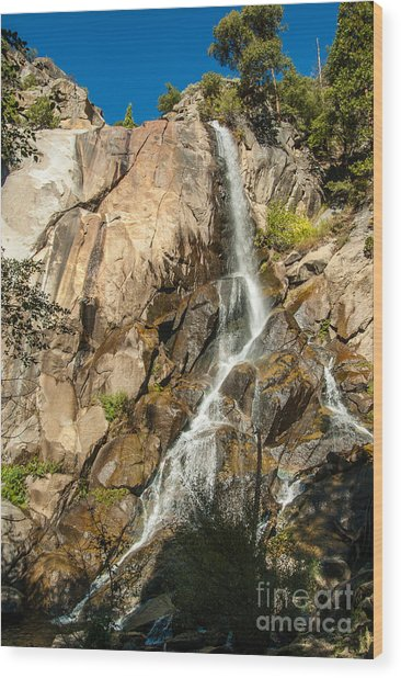 Grizzly Falls 1-7773 Wood Print