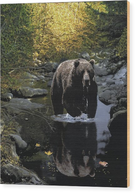 Grizzly Reflection Wood Print