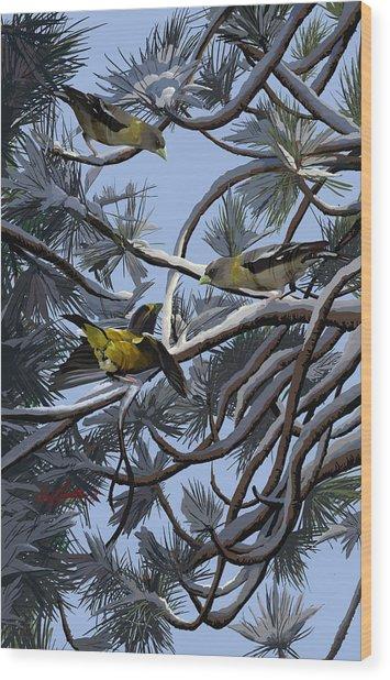 Grosbeaks On Tree Limbs Wood Print