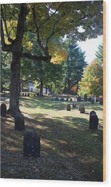 Groton Cemetery 1 Wood Print by Mary Bedy