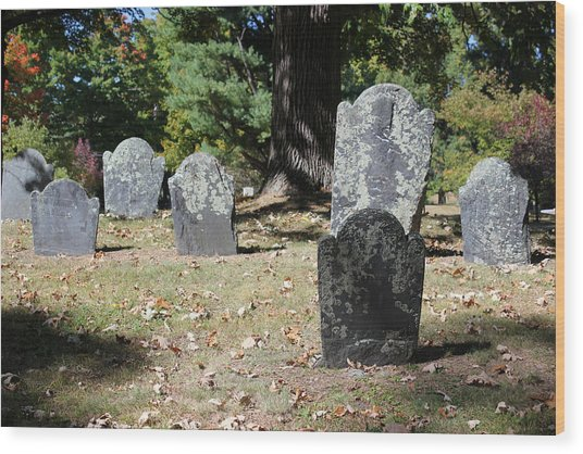Groton Cemetery 5 Wood Print by Mary Bedy