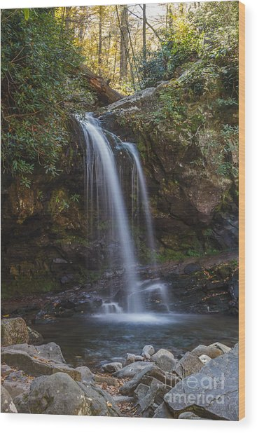 Grotto Falls I Wood Print
