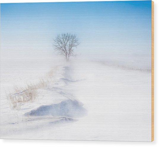 Ground Blizzard Wood Print
